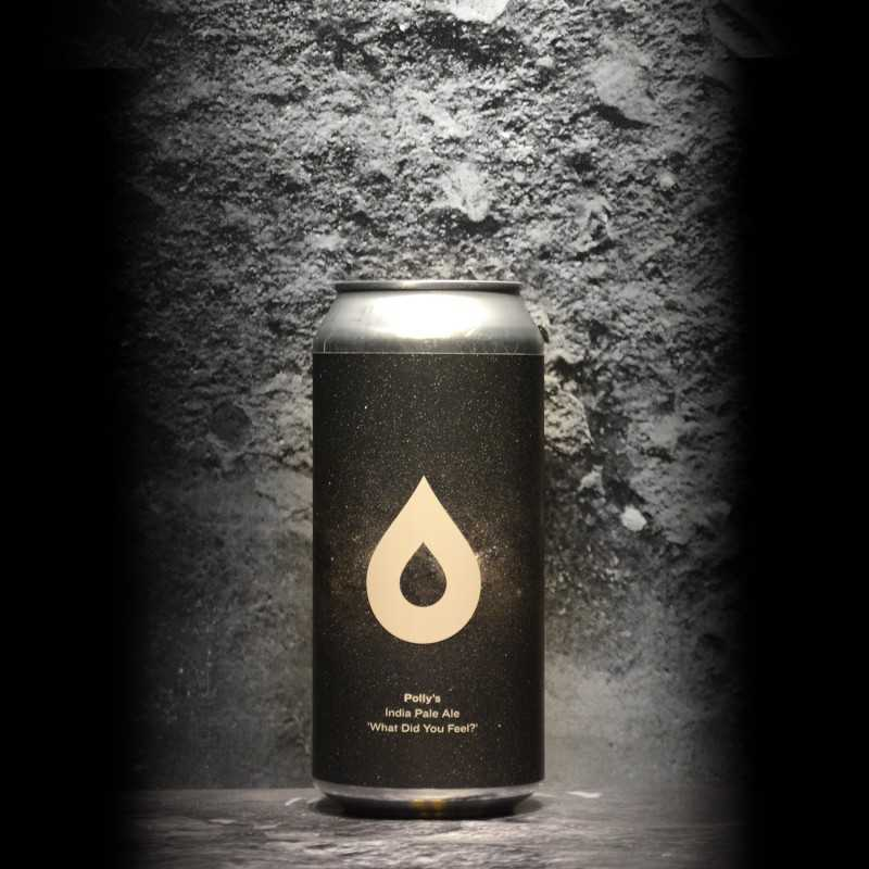 Polly's Brew - What Did You Feel? - 6.8% - 44cl - Can