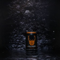 Wild Beer - Pogo - 4.1% - 33cl - Can