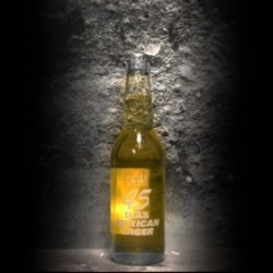 To Ol - 45 Dias Mexican Lager - 4.5% - 33cl - Bte
