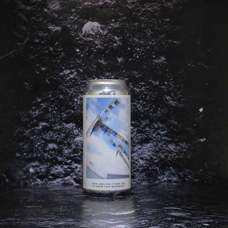 Evil Twin - How long did it thake you to grow that mustache - 5.5% - 47.3cl - can